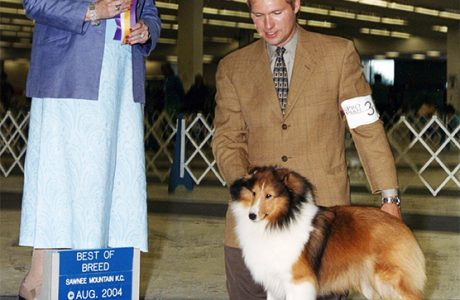 Hannah shown by Nick Joines receiving Best of Breed.