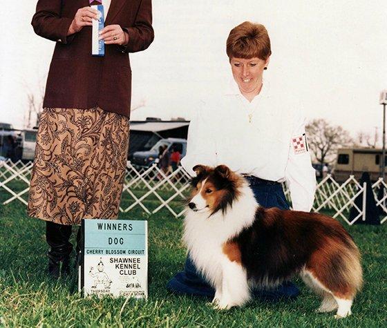 Zack receiving Winners Dog at Shawnee Kennel Club.