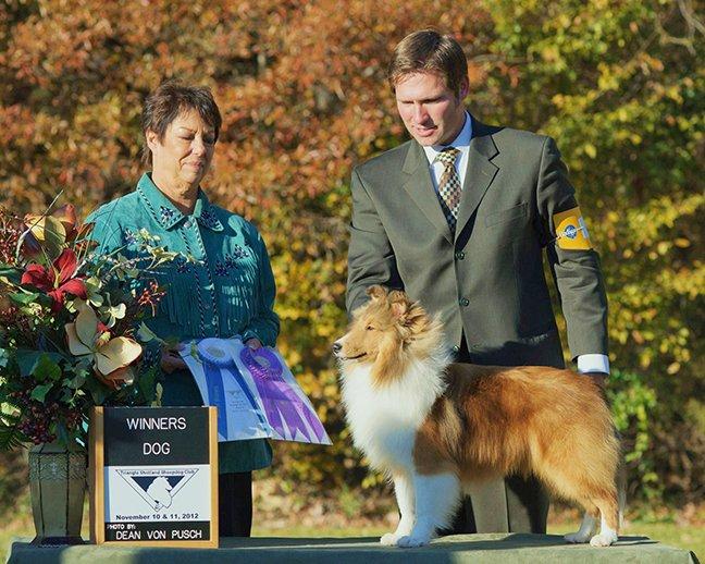 CH WinSong's The Bear Necessities receiving Winners Dog.